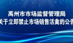 即日起,禹州全面禁止市场销售活禽