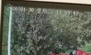禹州1男子殴打防疫卡点工作人员,被拘留!