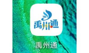 公告7号!禹州市区定点投放销售口罩!1.3元/个,附预约攻略! ...