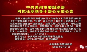 中共禹州市委组织部对拟任职领导干部公示的公告