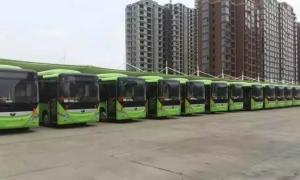 官宣!禹州部分(城乡)公交线路恢复运营!令人振奋的是... ...