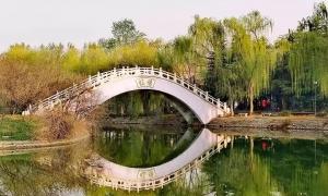 禹州发布重要天气预报!最低降至4℃!降温+降雨+大风