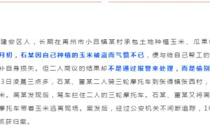 事发禹州,为200多元玉米,判刑3年