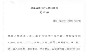 禹州杨某某再被逮捕!